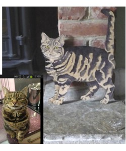 Personalised Cat Standing Wall Plaque