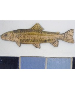 Trout Wall Plaque