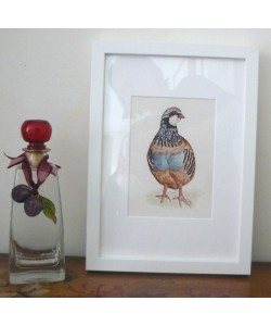 Partridge Original Watercolour