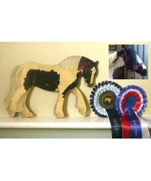 Personalised Pony Wall Plaque - Cob